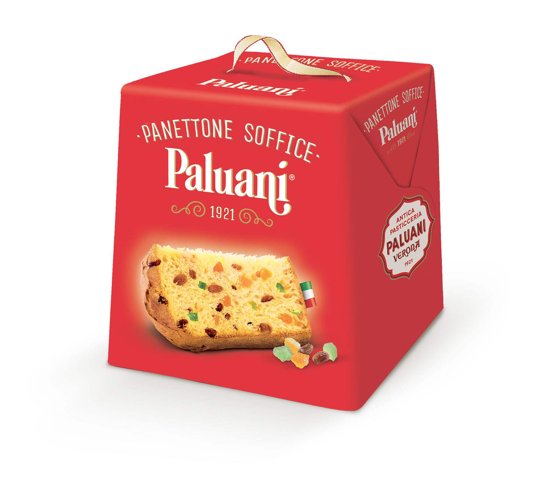 Panettone Soffice Paluani 100g - FORMICA